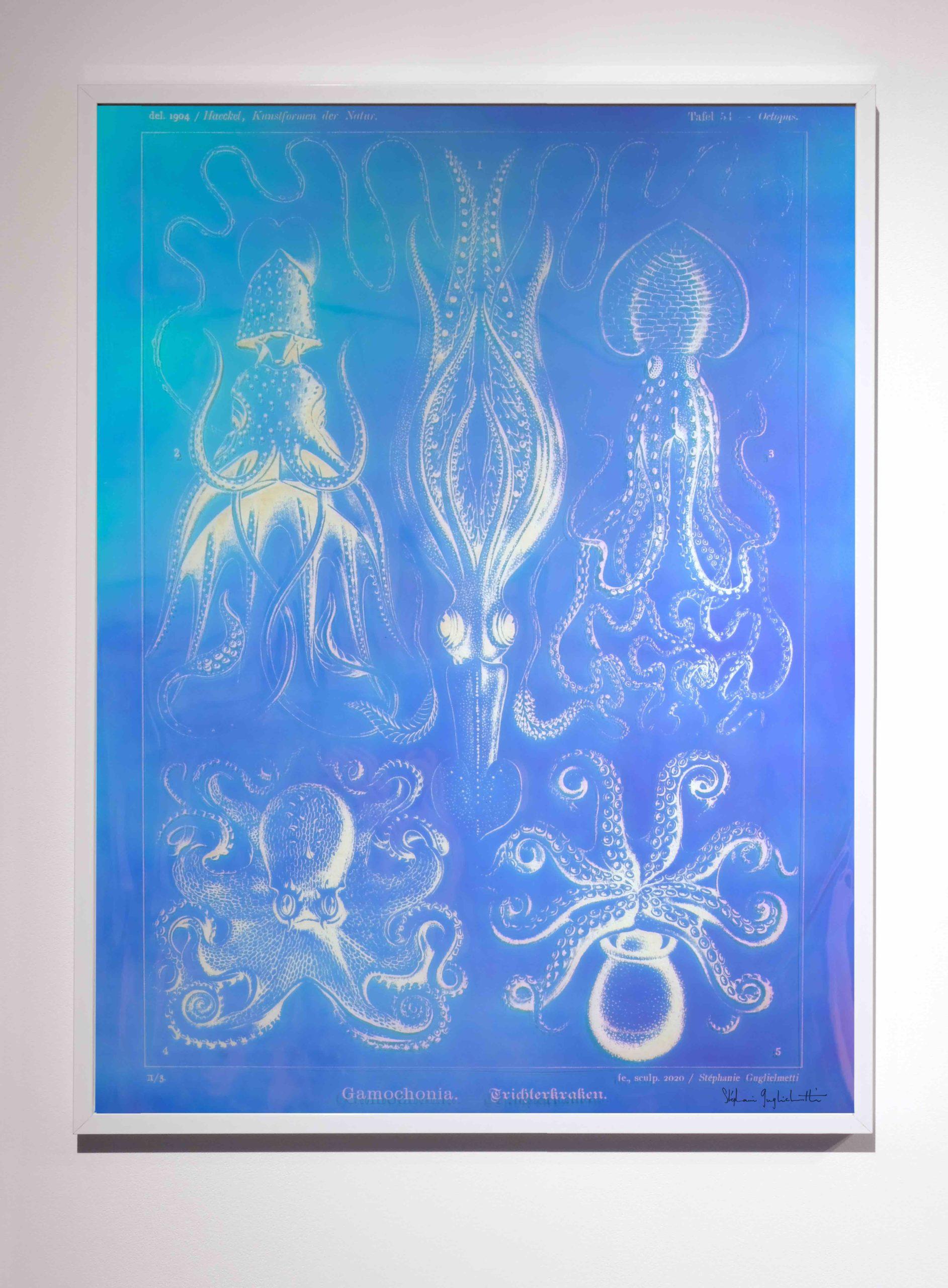 Medusae#III