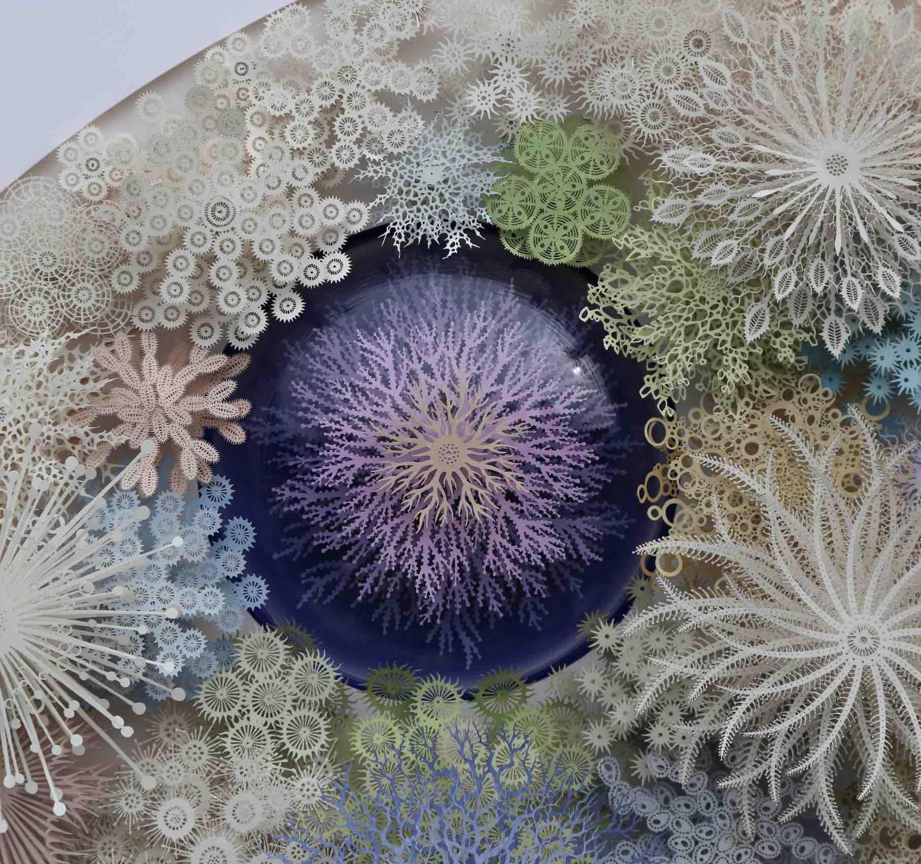 Coral Garden détail 2
